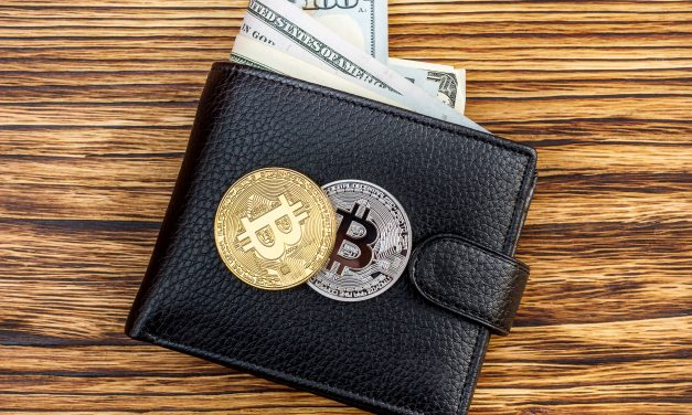 The Rising Number of Crypto Wallet Users Shows Positive Signs in Crypto Space