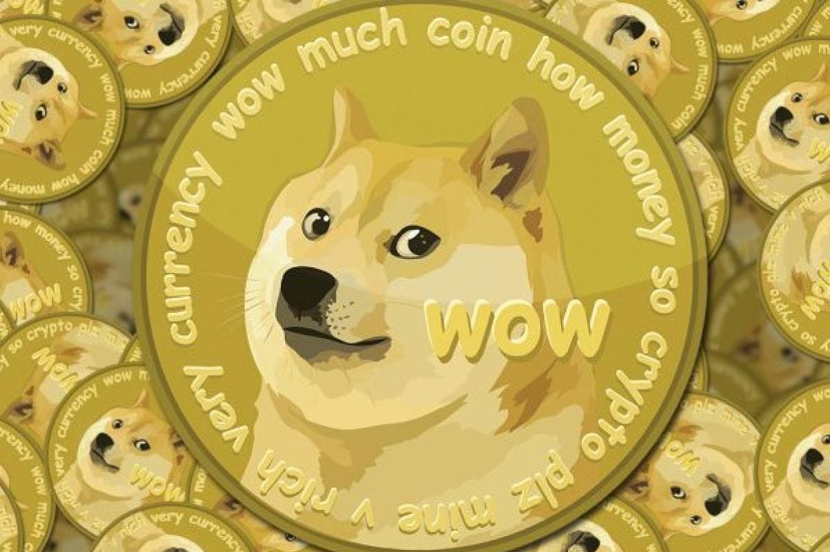 Image result for doge foundation