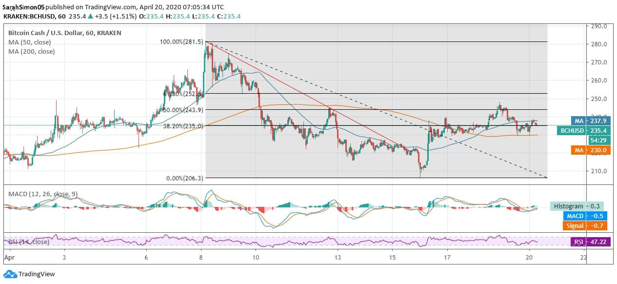 BCH is Likely to Observe a Bearish Hit if it Nosedives Further