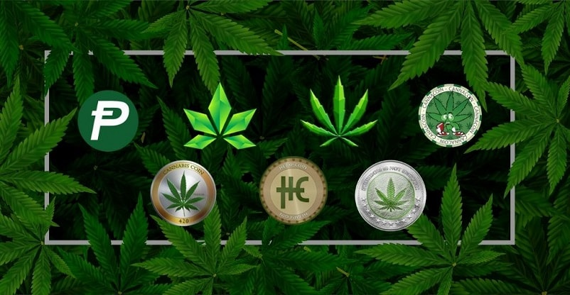 weed coin cryptocurrency